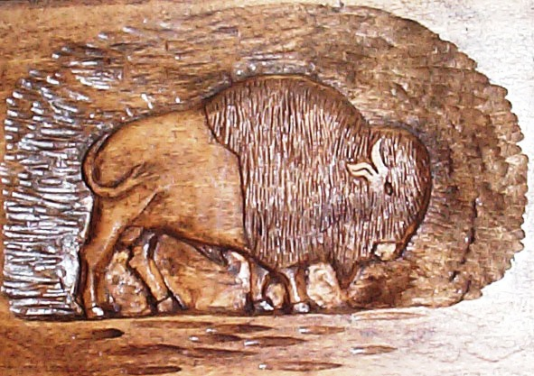 Buffalo relief carving